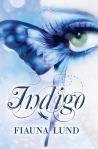 front-cover-indigo